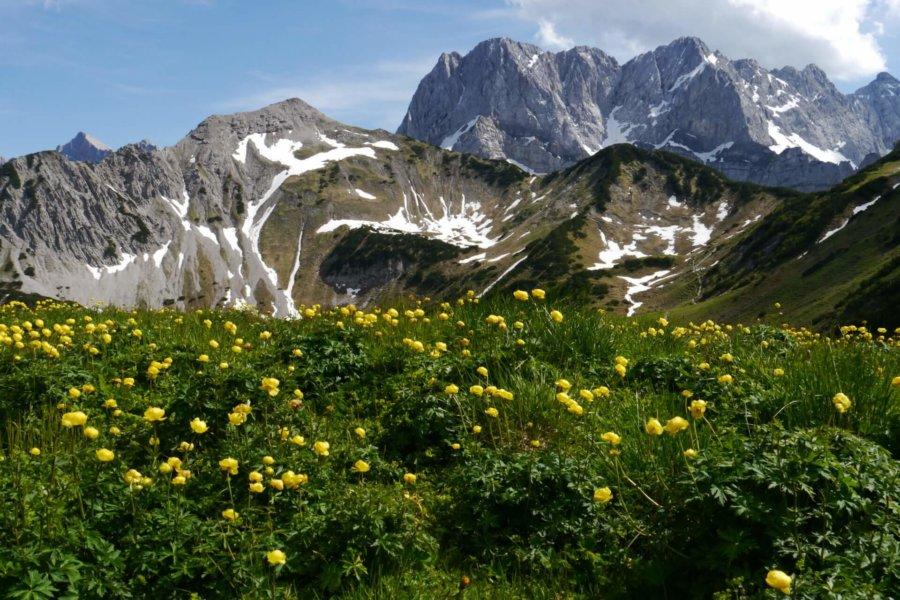 Blick ins Naturschutzgebiet Karwendel