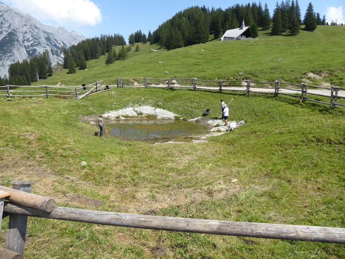 Kleiner Teich Walderalm