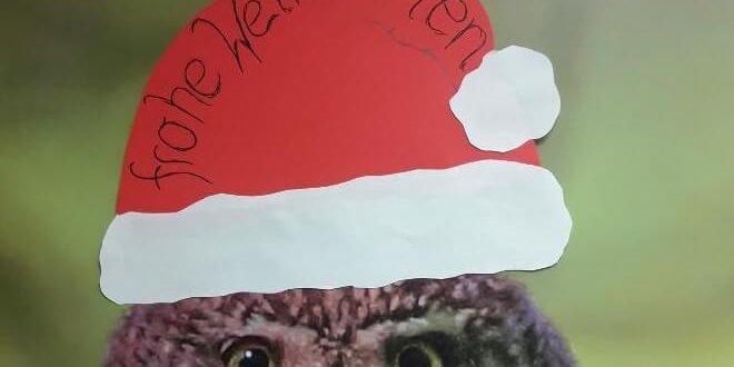 Der Naturpark Karwendel wünscht Frohe Weihnachten!