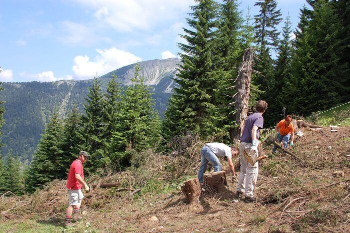 Helfer beim Bergwaldprojekt 2011 am Schönalmjoch