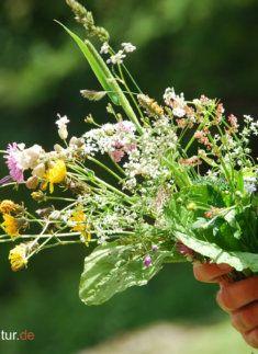 Alpenpflanzenstrauß