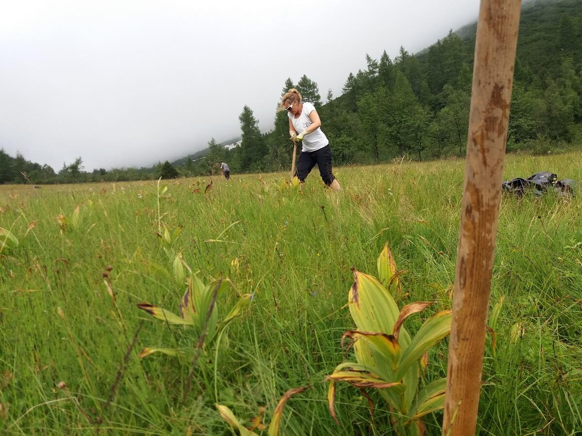 Germer stechen am Issanger mit dem Team Karwendel
