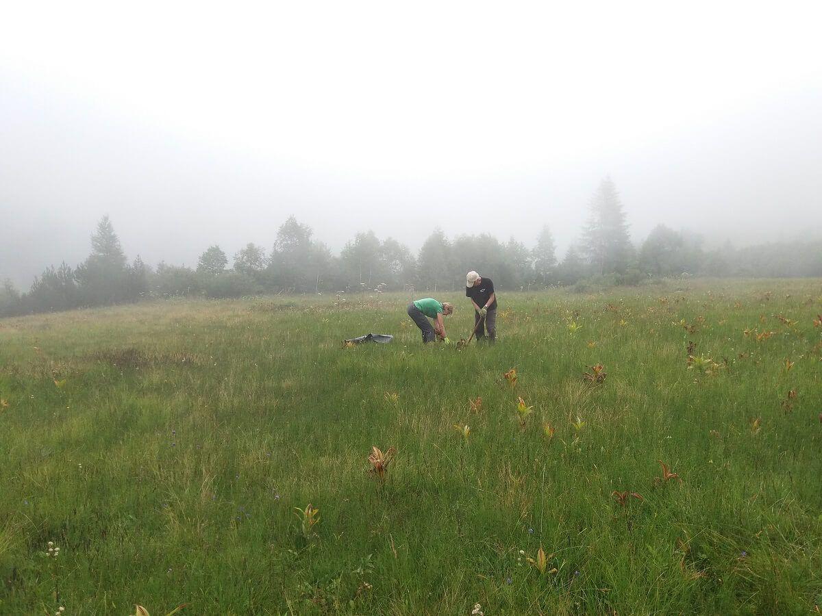 Team Karwendel beim Germer stechen am Issanger