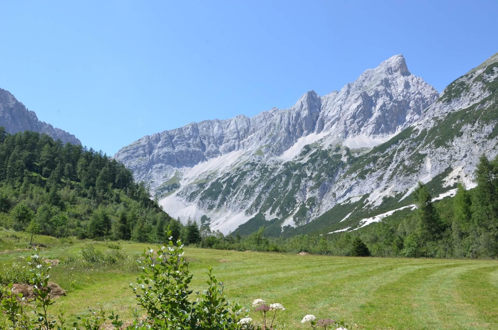 Issanger nach Biotoppflegemaßnahmen durch das Team Karwendel 2015