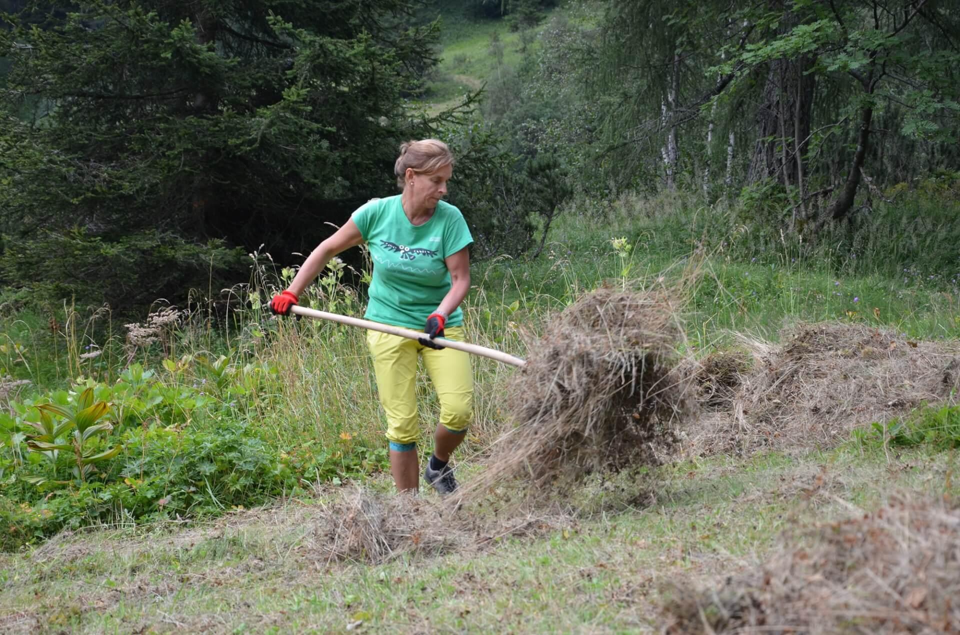 Team Karwendel bei Biotoppflege am Issanger 2015
