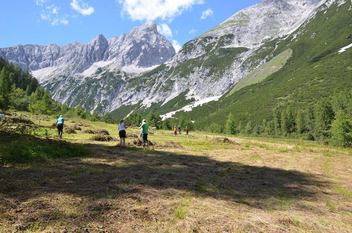Team Karwendel bei Biotoppflege am Issanger 2016