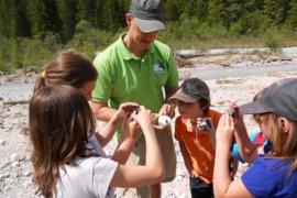 Anton Heufelder vom Naturpark Karwendel zeigt SchülerInnen eine Köcherfliege auf einem Stein sitzend.