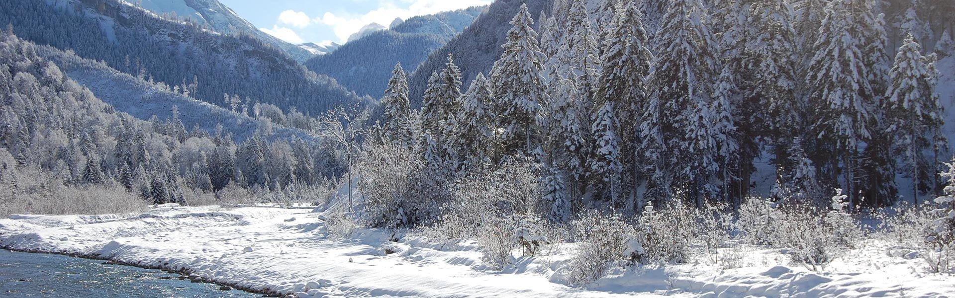 Winteraufnahme Hinterriß