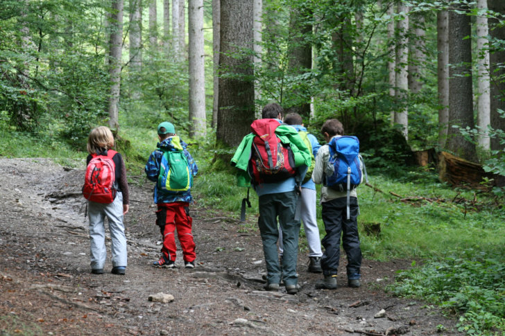 5 Kinder orientieren sich im Wald mit Karte und Kompaß beim Junior Ranger Modul Orientierung.