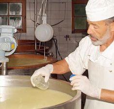Kaseherstellung in der Käserei auf der Engalm