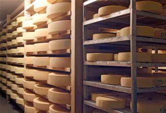 Käse in der Käserei auf der Engalm