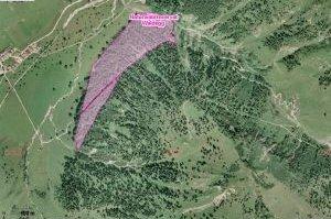luftbild naturwaldreservat waldegg