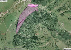 Luftbild vom Naturwaldreservat Waldegg