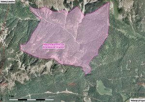 luftbild vom naturwaldreservat kranebitter klamm
