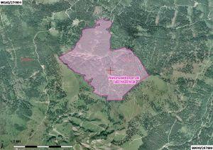 Luftbild vom Naturwaldreservat Taschbachtal