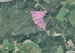 luftbild vom naturwaldreservat umlberg