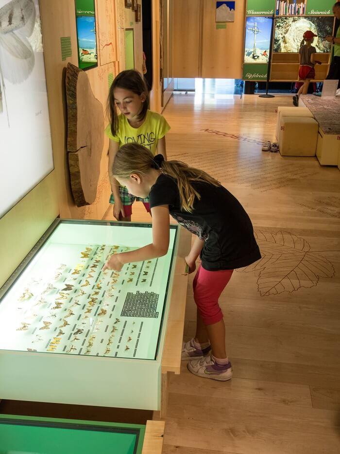 Kinder am Schmetterlingskasten in der Assutellung im Naturparkhaus Hinterriß