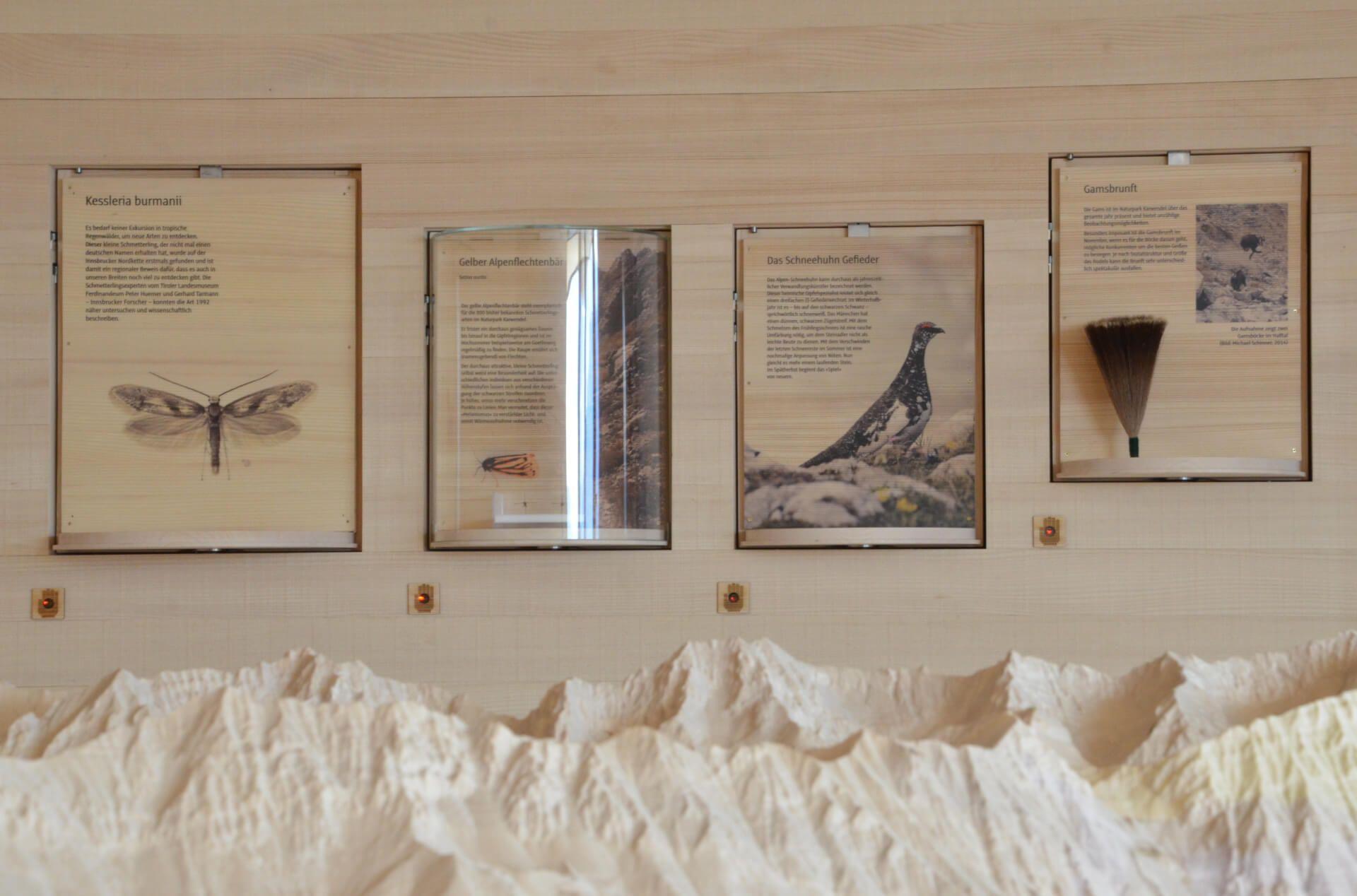 Ausstellung im Naturraum Karwendel auf der Umbrüggler Alm