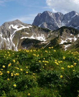 naturschutzgebiet karwendel