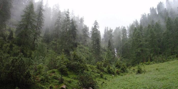 naturwaldreservat gumpenkopf 3