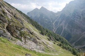 naturwaldreservat tortalalm 2