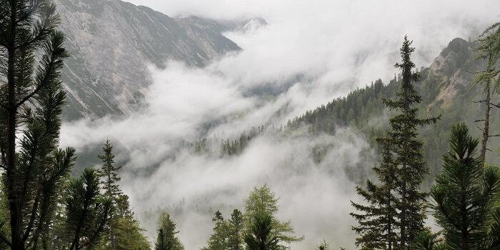 naturwaldreservat weites tal