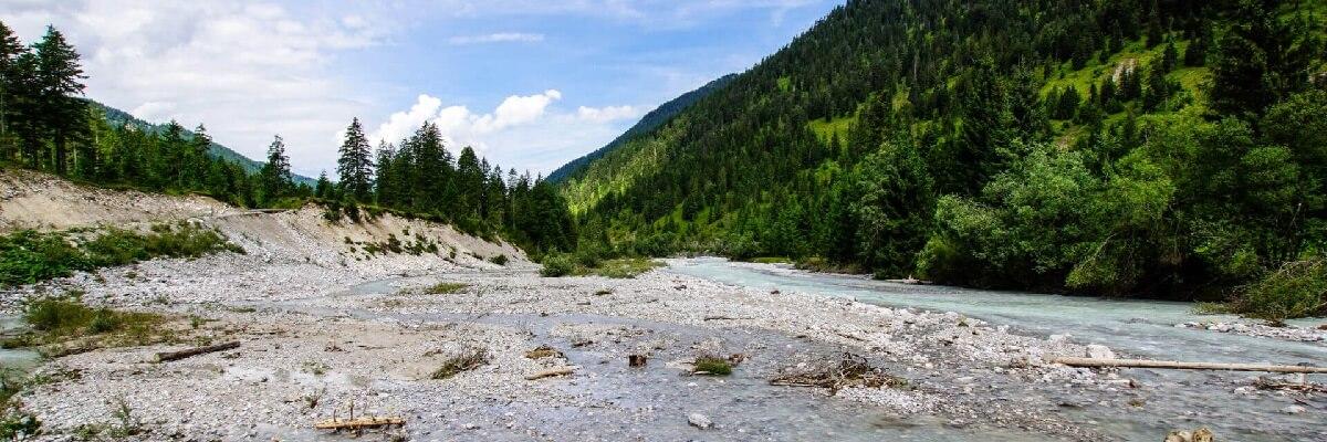 Wildfluss Rissbach