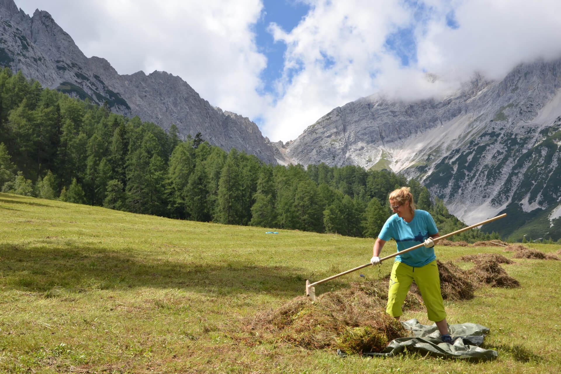 Pflegemaßnahmen am Issanger duch das Team Karwendel