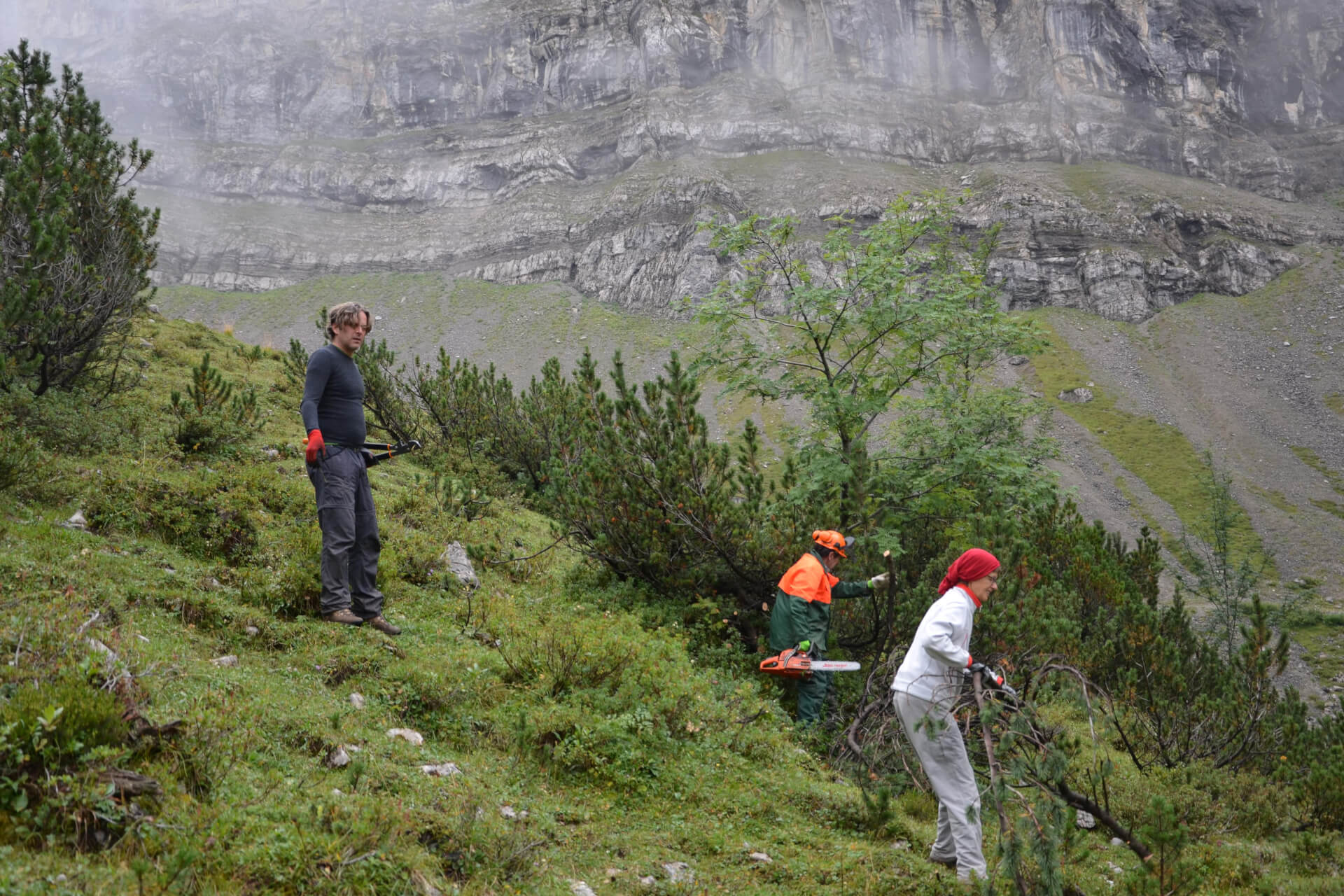 Mitglieder des Team Karwendel bei Almpflegemaßnahmen auf der Laliders Alm