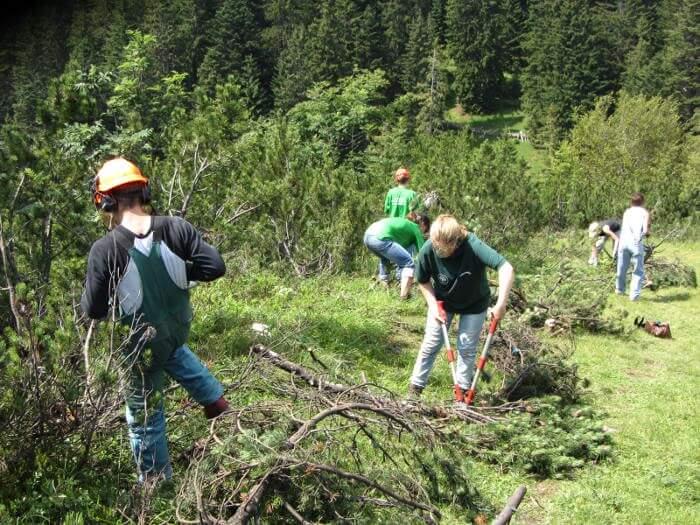 Helfer auf der Umweltbaustelle der Thaurer Alm 2012