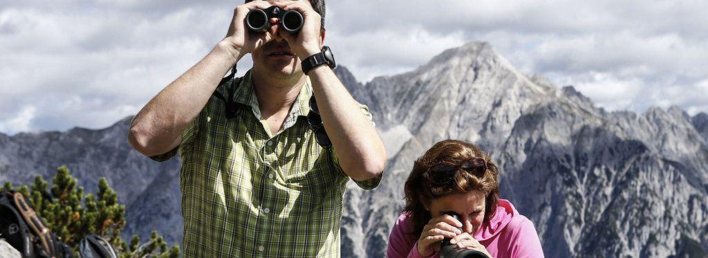 Naturbeobachtungen