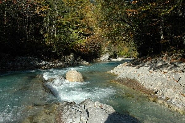 Blick über den Wildfluss Rissbach
