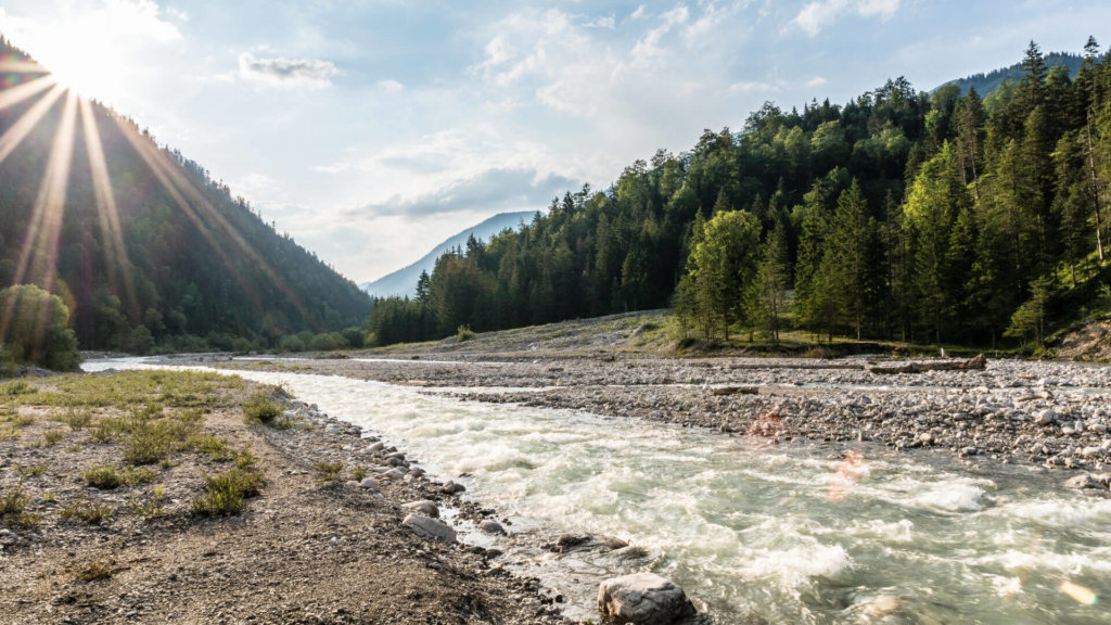 wildfluss rissbach 6